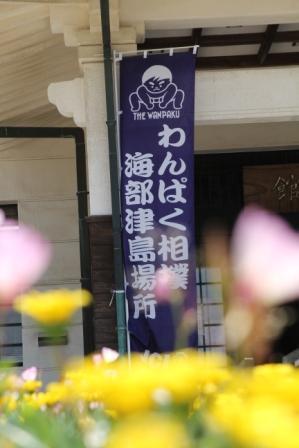 相撲3.jpg